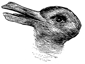 duck_rabbit